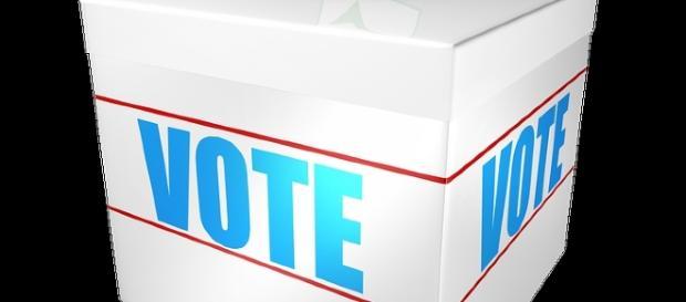 Si vota dalle ore 8 alle ore 20.