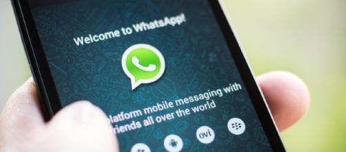 Whatsapp ama le GIF: nuovo aggiornamento converte video e foto ... - macitynet.it