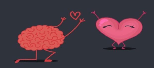 É o coração ou o cérebro que faz com que você se apaixone?