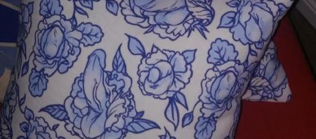 Almofadas têm desenhos de órgão genital masculino