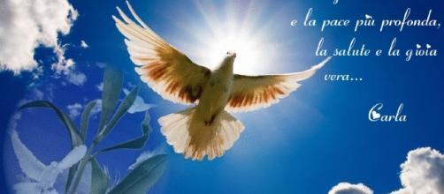 Buona domenica delle Palme, messaggi di auguri