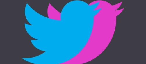How to Use Affinitweet Valentine's Day Twitter? Is It Safe? - nymag.com