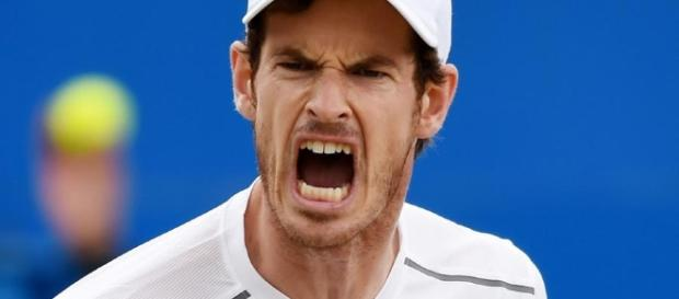 Tennis-Murray loses season opener to Goffin in Abu Dhabi | Zawya ... - zawya.com