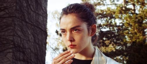 Voraz (Raw), una película para estómagos fuertes. Foto vía Sinopcine