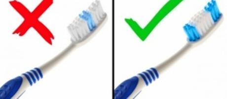 As esvovas de dentes macias limpam e mantém a higiene bucal saudável - BrightSide