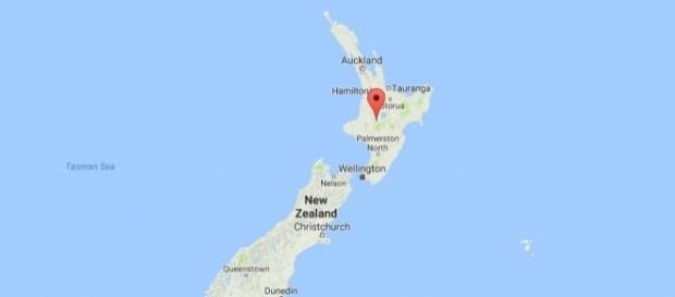 Britons hurt in bus crash in New Zealand's Tongariro Forest Park - ibtimes.co.uk