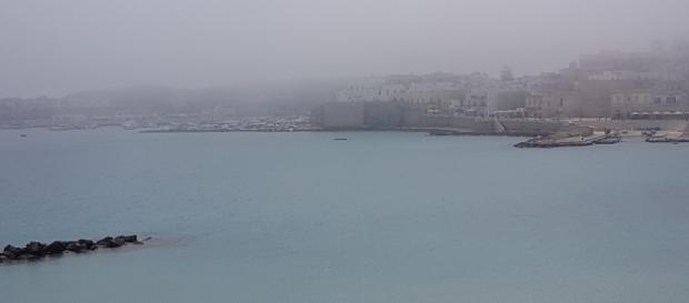 """La """"lupa di mare"""" presente a Otranto"""
