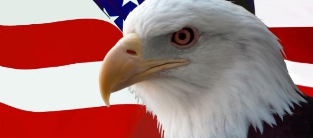 Veterans Day – America and its wars | Veterans Today - veteranstoday.com