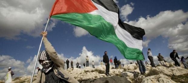 Palestine: A Modern Day Karbala | Ahlulbayt Islamic Mission - aimislam.com