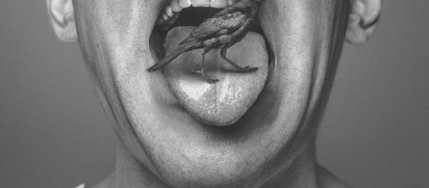Toxinas da língua podem afetar sistema digestivo e respiratório