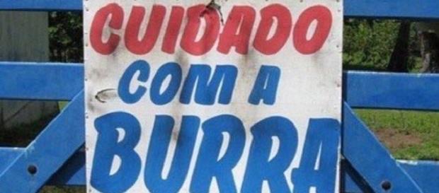 Veja os erros de português mais hilários comentados na web