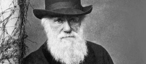 Charles Darwin: el naturista que revolucionó la biología - laizquierdadiario.com