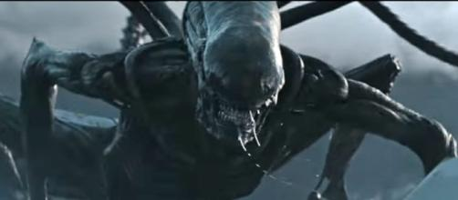 Alien Covenant monster. / Photo screencap from 20th Century Fox via Youtube