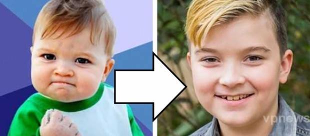 Sammy tinha 11 meses de idade quando uma imagem sua se transformou em meme