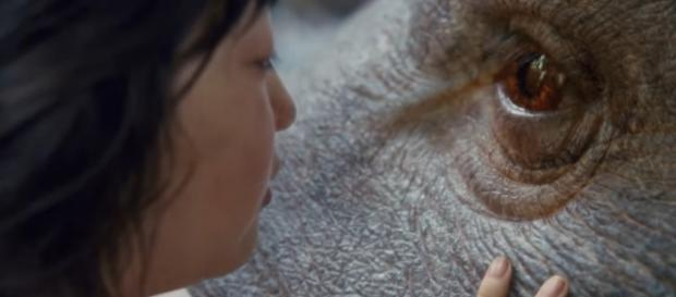Will Mija protect Okja from the corporations? / Photo via Movie reviews, news, trailers, and short films that don't suck ... - flixist.com