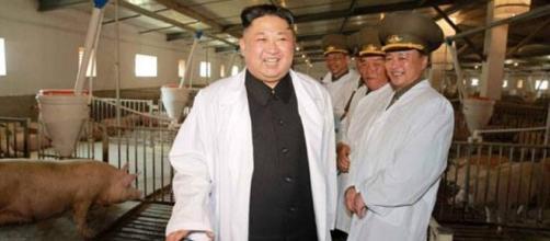Corea del Nord, il regime di Kim Jong-un: dai lanci di missili ... - corriere.it
