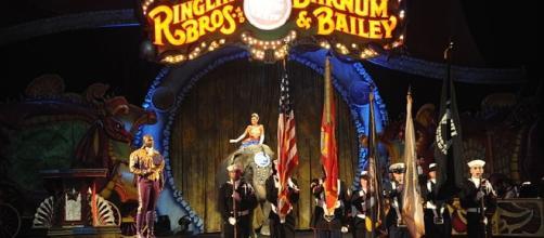 The history of the Ringling Bros circus / Photo CCO Public Domain via Wikimedia