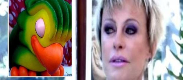 Ana Maria Braga revela vício e fala em internação (Foto: Google)