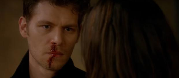 The Originals' Season 4 News & Spoilers: Hayley, Hope To Save ... - itechpost.com