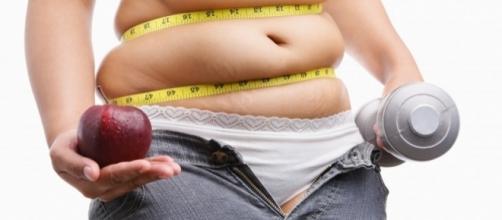 Qual a função das gorduras no organismo? ( Foto: Google)
