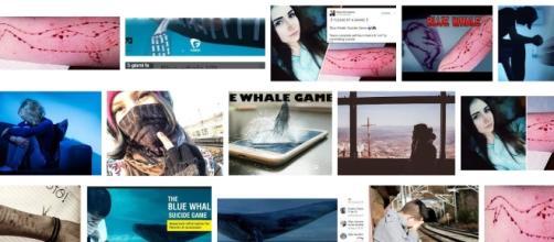 suicidi e pericoli del gioco Blue Whale