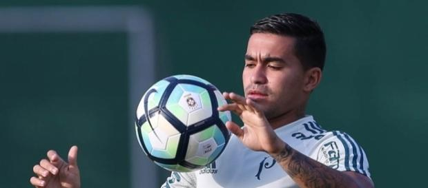 Palmeiras busca vitória em sua Arena, após perder três fora