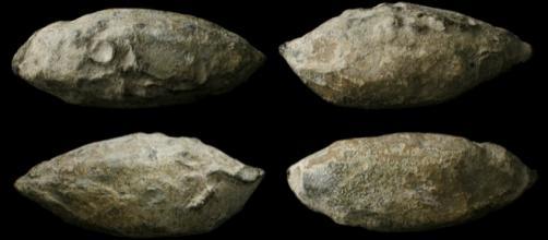 Ancient Resource: Ancient Roman and Celtic Lead Slingshot Bolts ... - ancientresource.com
