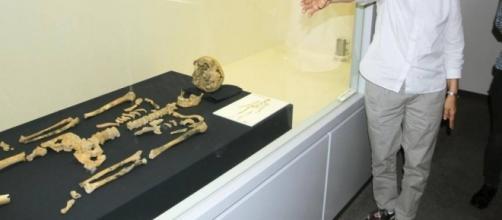 Imagen de los restos hallados el pasado 19 de mayo   Fotografía perteneciente e a Kyodo News