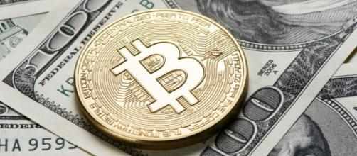 Why are Bitcoin and Ethereum growing so fast? – A N I T H - anith.com