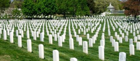 Memorial Day Honoring Those Lost CC0 Public Domain Maxpixel
