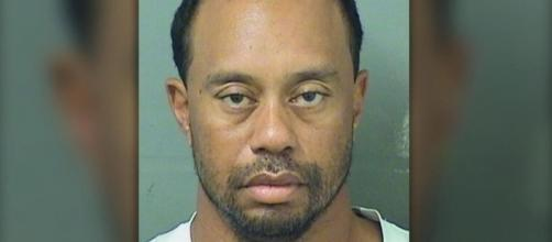 Photo Tiger Woods courtesy Palm Beach County Sheriff's Office