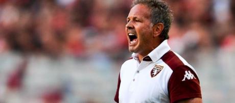 Calciomercato Torino, ecco l'attaccante richiesto da Mihajlovic