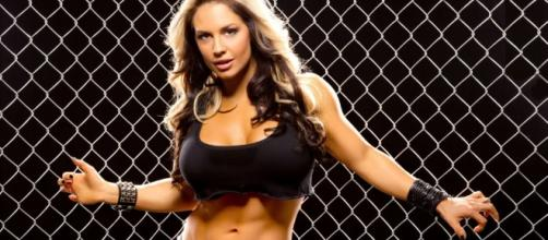 Former Divas Champion Kaitlyn is the latest victim of having her private content leaked online. [Image via Blasting News image library/yuku.com]