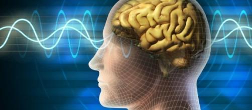 Gli 8 segnali che indicano che sei più intelligente della media