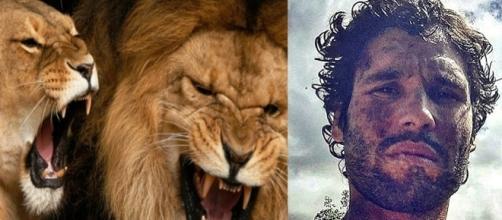 Lobo de Judá pode enfrentar leões em 'O Rico e Lázaro'