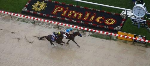 The Preakness Stakes is the second leg of the Triple Crown in horse racing. [Image via Blasting News image library/sportingnews.com]
