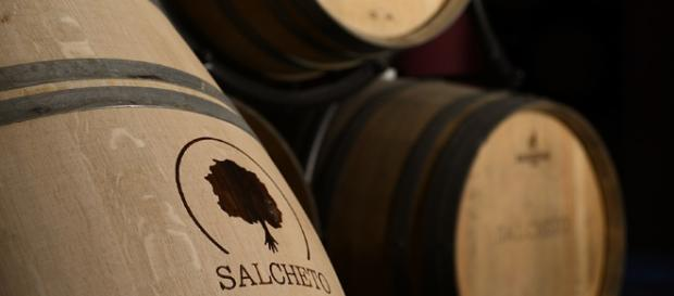 Salcheto Cellar, Montepulciano Tuscany. Courtesy of the Salcheto winery.