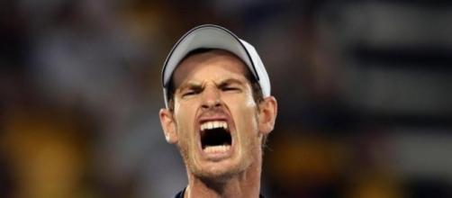 Tennis ace Andy Murray (Image credit: thesun.co.uk)