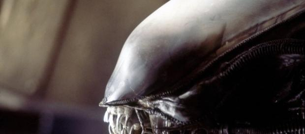 Ridley Scott: aliens are out there and one day they'll come for us ... - modernsurvivalliving.com