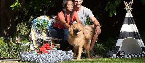 The Bachelorette Rachel Lindsay's Dog Copper - Screenshot