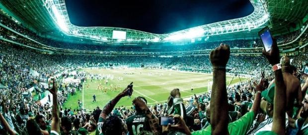 Palmeiras melhora e vence o Fluminense