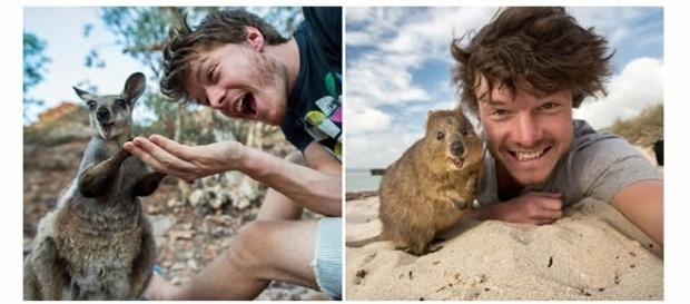 Selfies bem criativas com animais