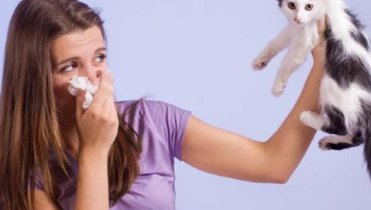 tipos de pruebas para detectar alergias