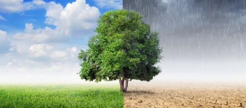 Il G7 dell'Ambiente si è tenuto oggi, 12 giugno, nel capolougo dell'Emilia-Romagna