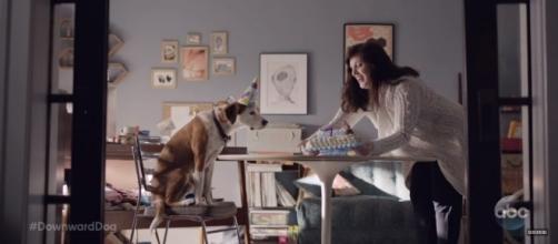 "Ned and Allison Tolman stars in ABC's ""Downward Dog"" as screen grabbed via YouTube/tvpromosdb."