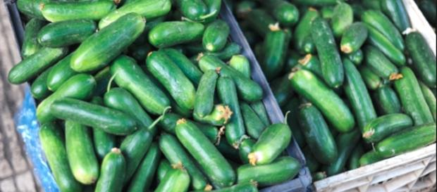 Cooling cucumbers / Guillaume Paumier via wikimedia