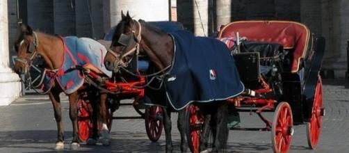 Addio per sempre alle botticele, le carrozze trainate dai cavalli, a Roma? Pare proprio di sì ma i vetturini annunciano che daranno battaglia.