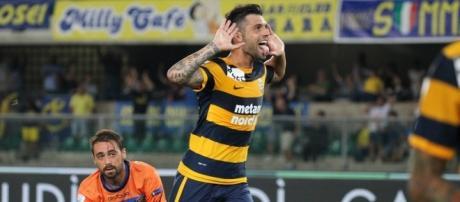 Daniel Bessa, centrocampista del Verona - foto: tuttocalciatori net