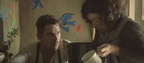 Ethan Hawke as Everett Lewis and Sally Hawkins as Maud Lewis - Image via Sony Pictures Classics/YouTube