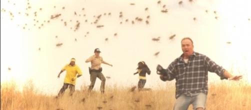"A scene from Milko Davis' new ""Tsunambee"" movie. / Photo via Clint Morris, October Coast PR. Used with permission."